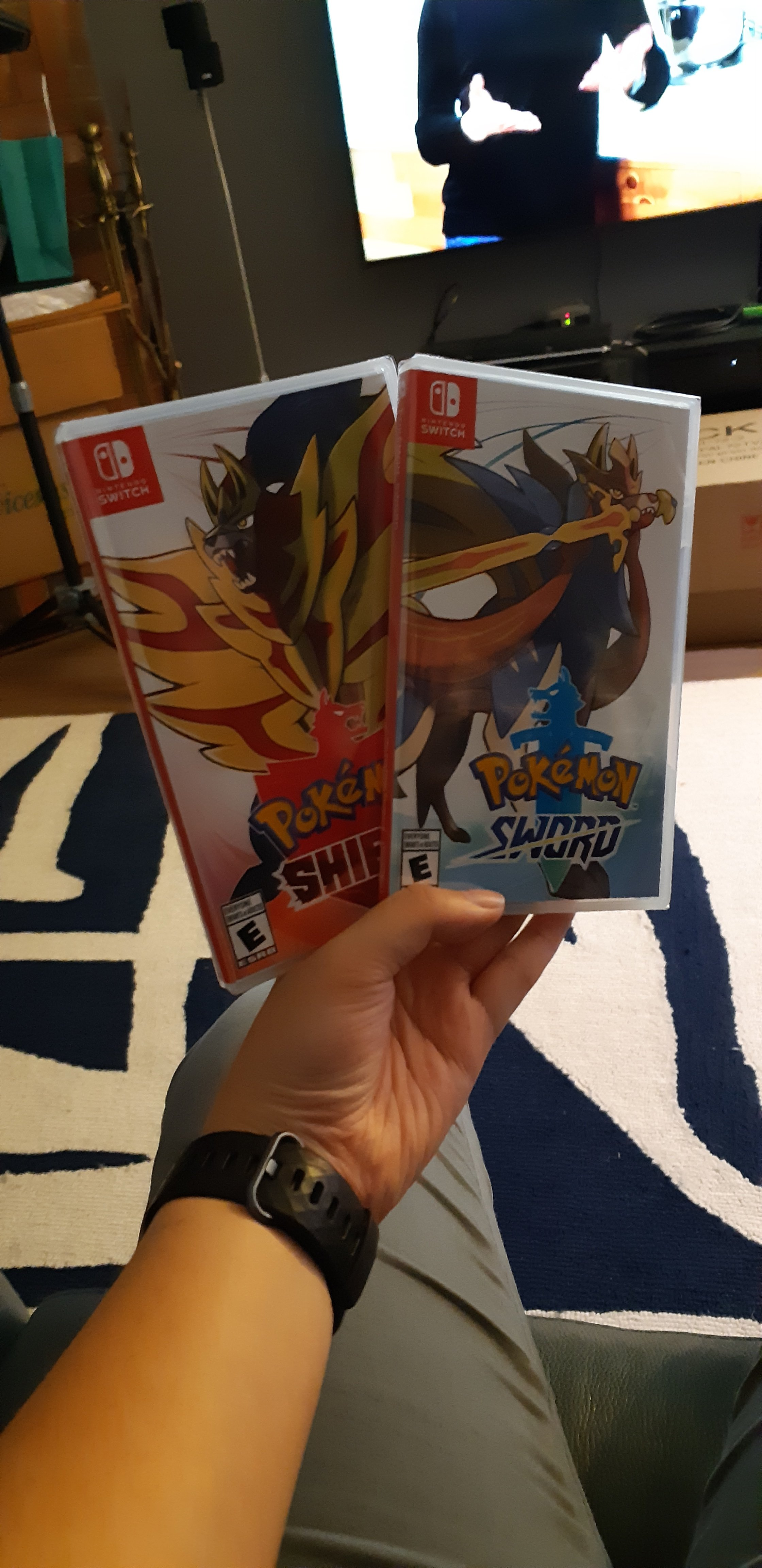 Pokemon Sword and Shield games in my hand.