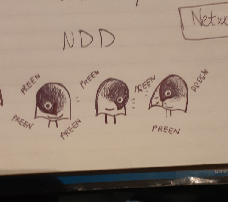 Important ISAO conference notes of preening burnt birds